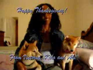MedicineFilms.com - Thanksgiving Wish