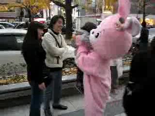 pink bunny 2