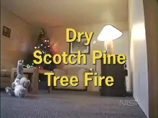 MedicineFilms.com - Christmas Tree Catches on Fire