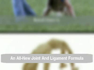 MedicineFilms.com - An Amazing Bend-Ease Joint Formula For Adults And Athletes
