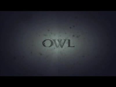 MedicineFilms.com - Owl